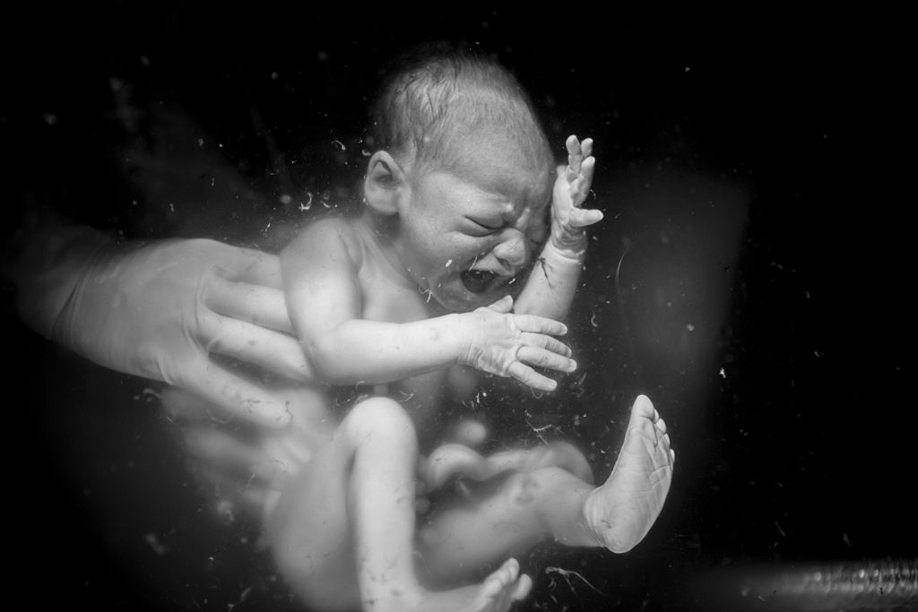 Победитель в номинации Рождение